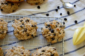 wild-blueberry-oat-scones